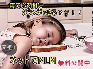 ネットでMLM-crop2.jpg
